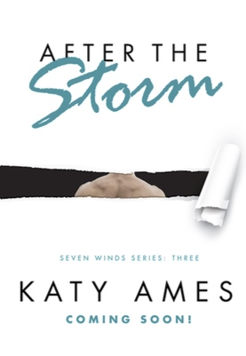 after the storm teaser cover