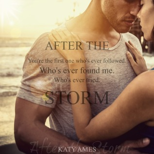 After the Storm & #TeaserTuesday